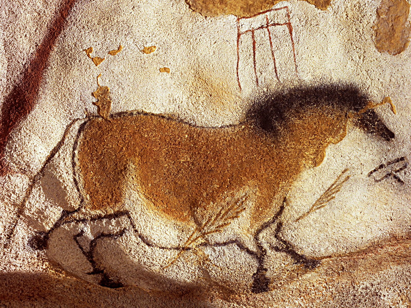 Horse Cave Art Paintings