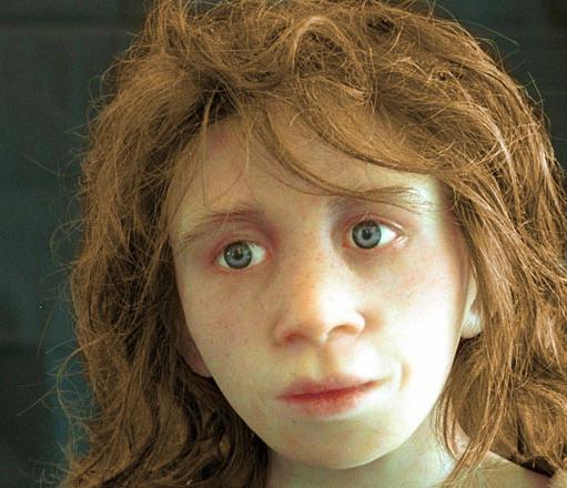 bambino Neanderthal - elaborazione computer grafica a partire da un reperto cranico