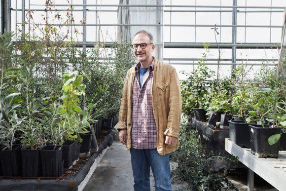 Stefano mancuso, Direttore del labvoratorio di Neurobiologia vegetale di Firenze