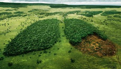 ecosostenibilita01