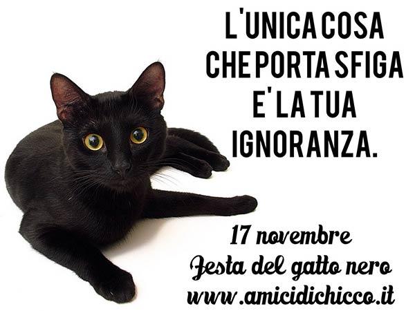 festa-gatto-nero