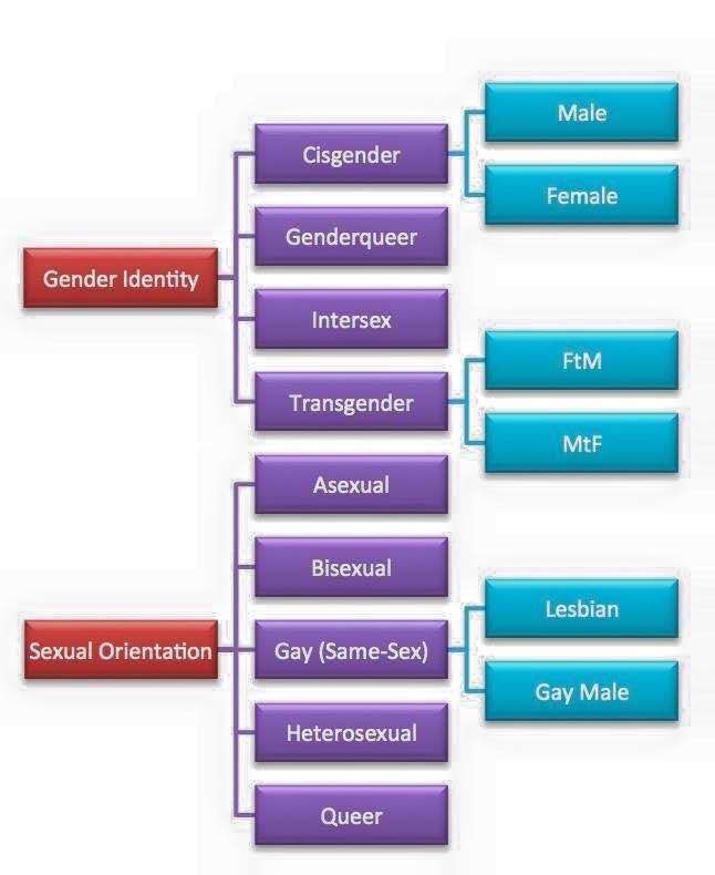 mappa gender