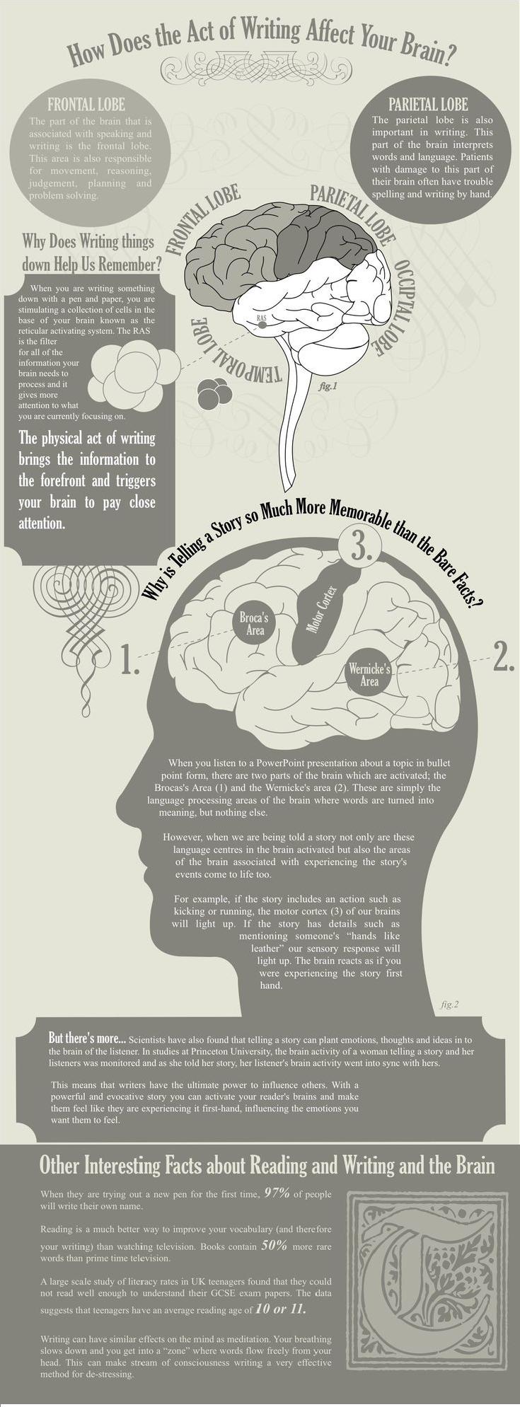cervello e scrittura